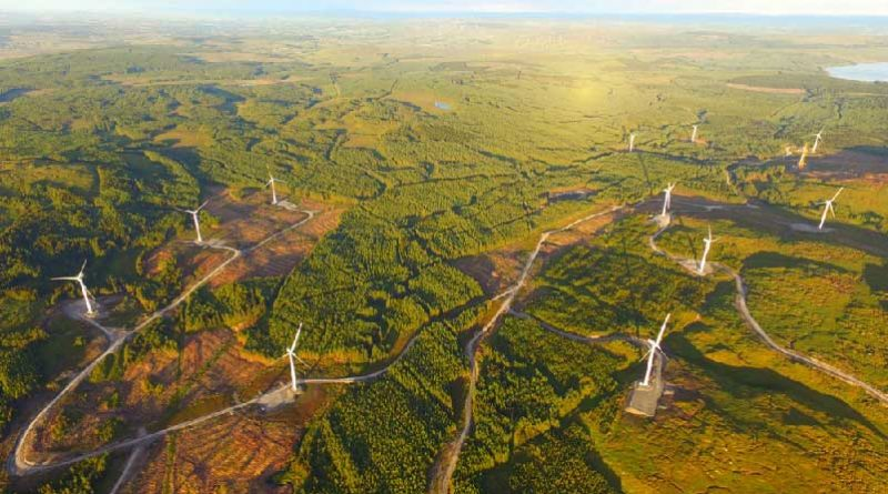 Ireland's largest windfarm opens for business