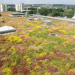 Achieve sustainability objectives with a blue roof system from Bauder